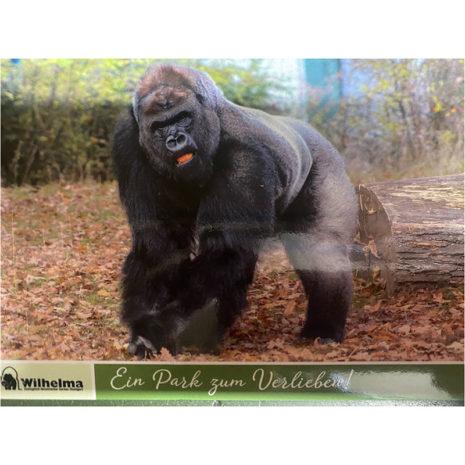 Postkarte Gorilla