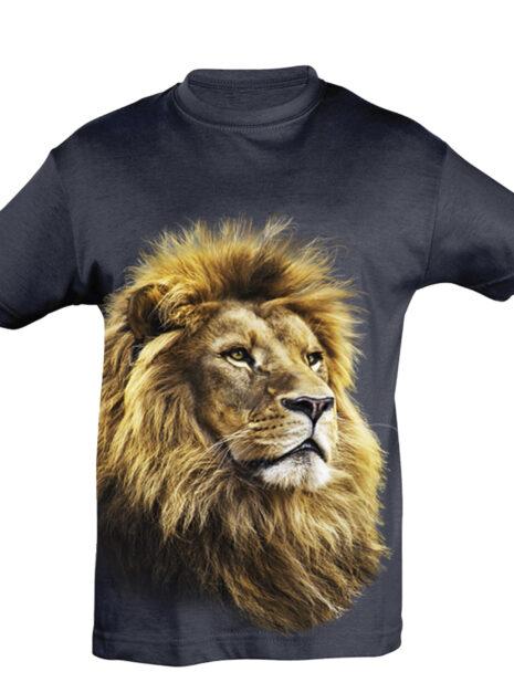 TK0001---Lion