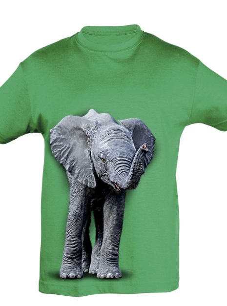 TK0024 - Elephant Baby