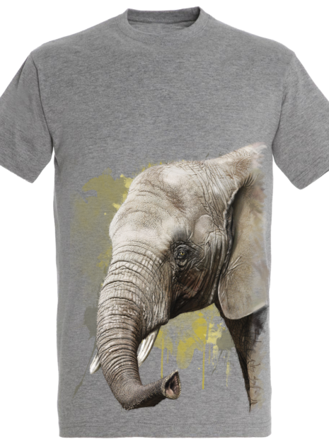 TM0015 - Elephant