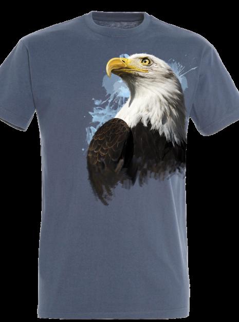 TM1016 - Eagle