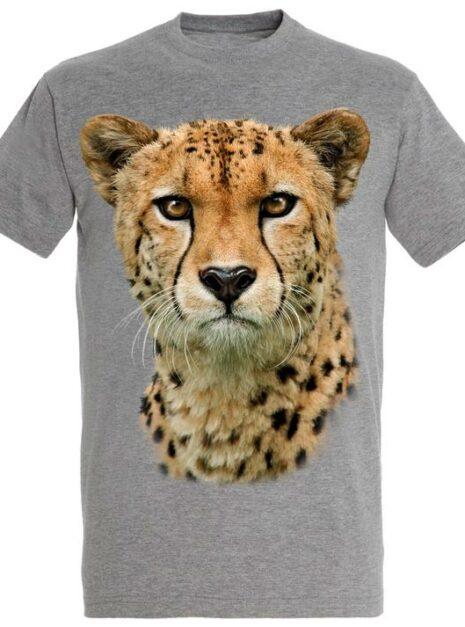 z5JjcpPRA2Hd7jSRs08c_TM0087---Cheetah_720x